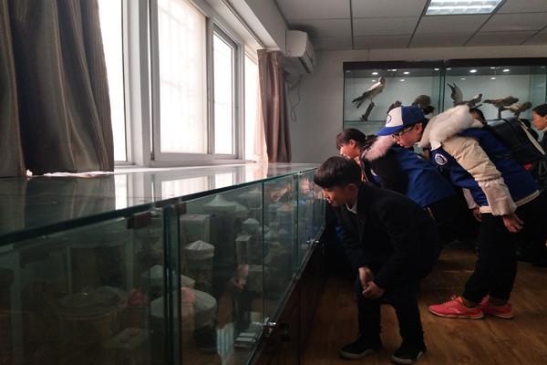 小记者们被校生物标本室中的动植物标本深深吸引.jpg