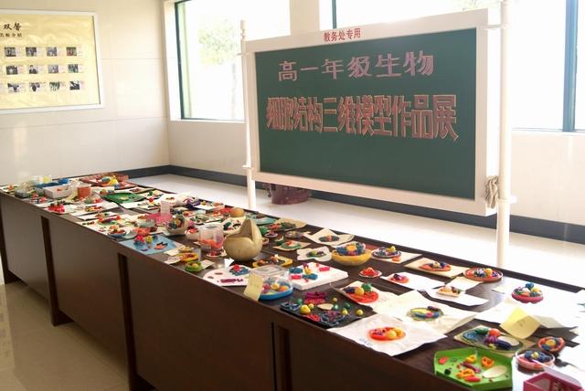 郑州十九中举行学生生物细胞结构三位模型作品展